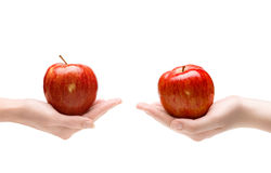 Two hands give each other an apple Stock Photography