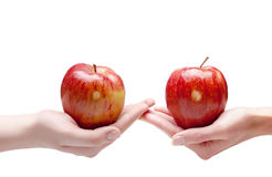 Two hands give each other an apple.Close up on a white background Royalty Free Stock Photos