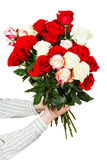 Two hands giving bouquet of many roses isolated. On white background Stock Photography