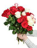 Two hands giving bunch of many roses isolated. On white background Stock Photos