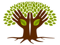 Two hands green tree Royalty Free Stock Images