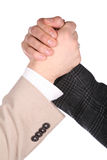 Two hands handshake Stock Images