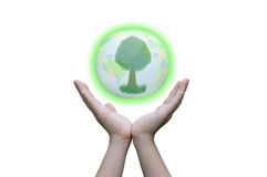 Two hands hold the Earth Royalty Free Stock Photo