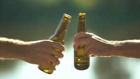 Two hands holding beer bottles clinking, resting together, holiday celebration. Stock footage stock footage