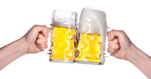 Two hands holding beers making a toast. On a white stock photo