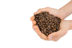 Two hands holding coffee beans Stock Photography