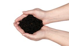 Two hands holding Dirt Royalty Free Stock Image