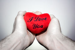 Two hands holding a heart that says Stock Photo