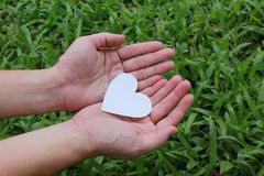 Two hands holding white heart Royalty Free Stock Image