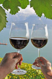 Two hands holding wineglases Stock Images