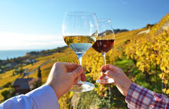 Two hands holding wineglases Stock Image