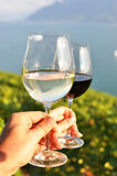 Two hands holding wineglasses Royalty Free Stock Image