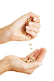 Two hands holding wood pellets Stock Photo