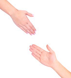 Two hands isolated Royalty Free Stock Image