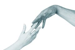 Two hands. Isolated on a white background Royalty Free Stock Images