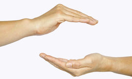 Two hands isolated on white background Stock Image
