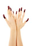 Two hands with long acrylic nails. Over white stock photo