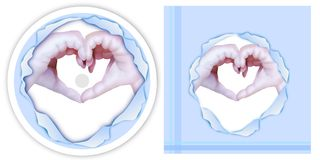 Two Hands Make Heart Shape on CD and DVD Template Royalty Free Stock Photo