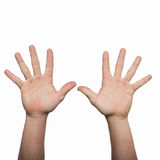 Two hands (man) Stock Photography