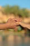 Two hands over nature Royalty Free Stock Image
