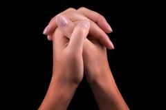 Two hands praying Stock Image