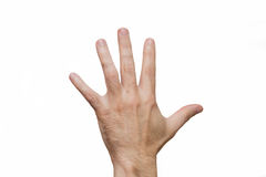 Two hands are raised to the top Stock Images