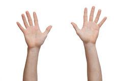 Two hands raised up Royalty Free Stock Photo