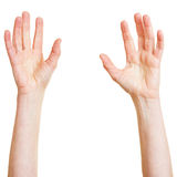 Two hands reaching up Stock Images
