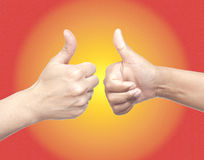 Two hands showing thumbs up Royalty Free Stock Image