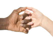 Two hands symbolizing the diversity of the world Stock Image
