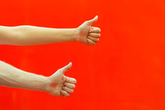 Two hands thumbs up. Stock Photography