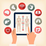 Two hands touching screen of a tablet with human organ icons. Ve Royalty Free Stock Photo