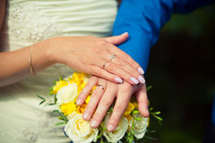 Two hands with wedding rings Royalty Free Stock Image