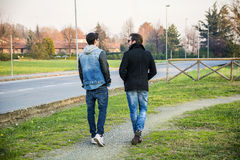 Two handsome young men, friends, in a park Stock Photos