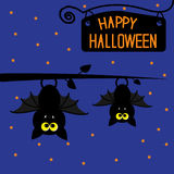 Two hanging bats at night. Happy Halloween card. Royalty Free Stock Images
