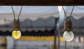 Two Hanging bulbs Stock Images