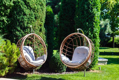 Two hanging chairs in garden on sunny summer day. Stock Image