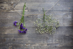 Two hanging flower bunches. Two flower bunches hanging on string on wooden background Royalty Free Stock Photo
