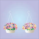 Two hanging pots Royalty Free Stock Photo