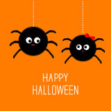Two hanging spider insect family couple. Boy Girl. Happy Halloween card. Flat design Royalty Free Stock Images