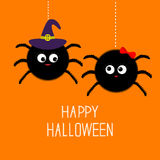 Two hanging spider insect family couple. Boy Girl. Witch hat. Happy Halloween card. Flat design Royalty Free Stock Photos