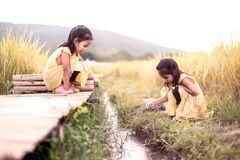 Two happy asian little child girls having fun to play together Stock Photo
