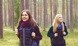 Two happy and beautiful girls walking in forest and swamps. Camp royalty free stock images