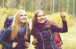 Two happy and beautiful girls walking in forest and swamps. Camp royalty free stock photography