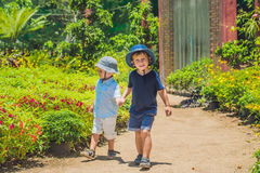 Two happy brothers running together on a park path in a tropical Stock Photos