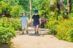 Two happy brothers running together on a park path in a tropical. Park Stock Photos