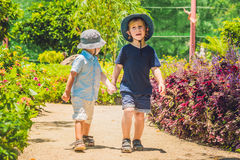 Two happy brothers running together on a park path in a tropical park Royalty Free Stock Image