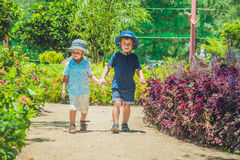 Two happy brothers running together on a park path in a tropical park Royalty Free Stock Photography