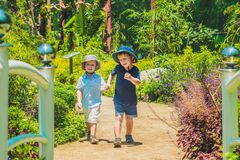 Two happy brothers running together on a park path in a tropical park.  Royalty Free Stock Images