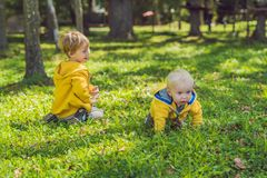 Two happy brothers in yellow sweatshirts in the autumn park stock image